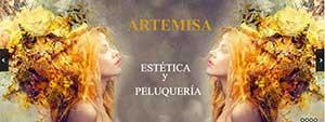 Página web para Salón de Belleza y Peluquería Artemisa