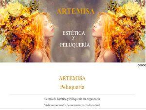 imagen diseño para atraer clientes a mi negocio de peluquería Artemisa